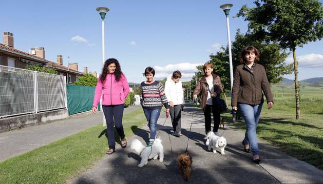 Imagen de un grupo de vecinas paseando a sus perros por un paseo ajardinado los límites de Mendillorri.