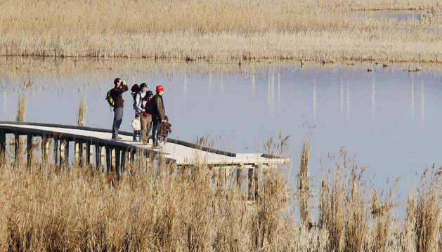 Imagen de un grupo de visitantes en la laguna de Pitillas.