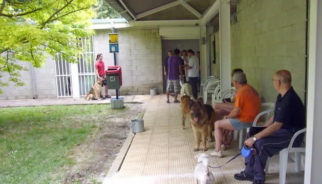 Imagen de varios propietarios junto a sus perro en una campaña de vacunación anterior.