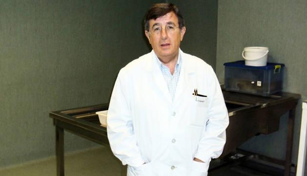 El catedrático de Anatomía de la Facultad de Medicina de la Universidad de Albacete, el navarro Ricardo Insausti.