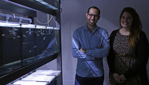 Ikan Biotech recibe 2 millones para investigar contra el cáncer