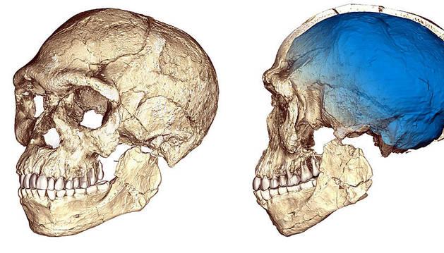Descubren en Marruecos los fósiles de 'Homo sapiens' más antiguos que se conocen
