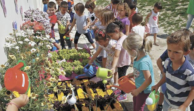 Los alumnos se encargan de regar las plantas a diario, vigilar el huerto en el recreo y comerse sus frutos.
