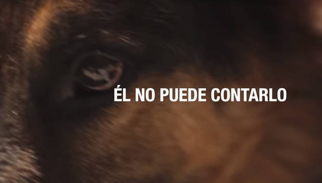 Imagen del sport de la Guardia Civil contra el maltrato animal.