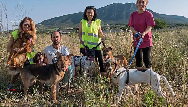 Animales del refugio en un rato de paseo con los voluntarios. En la imagen, Fátima Pérez, Eneko Erce, Merche Morales y Ana Ruiz.