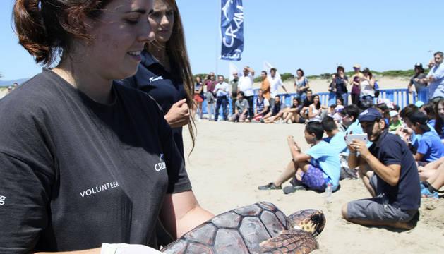 Cámaras y satélites, al rescate de tortugas en el Mediterráneo