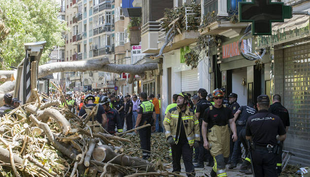 Foto de agentes de la Policía Local, Nacional y bomberos de Murcia retiran esta tarde parte de un ficus centenario que se ha derrumbado en la plaza de Santo Domingo,