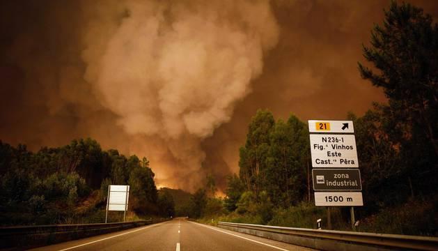 El secretario de Estado de Administración Interna del Gobierno luso, João Gomes, elevó esta madrugada a 25 el número de víctimas mortales en el incendio declarado este sábado en el centro de Portugal.