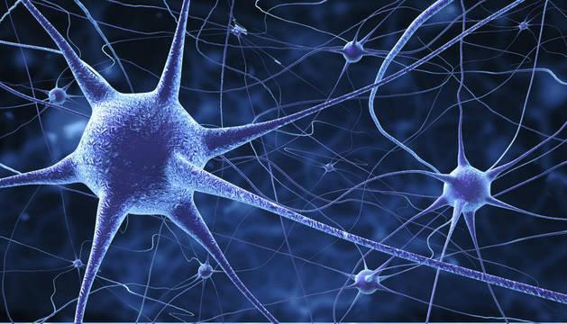Una simulación de un conjunto de neuronas.