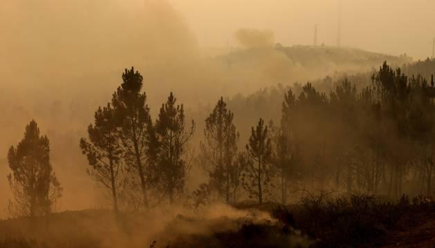 Foto del humo cubre el bosque quemado de Alto do Soeirinho.