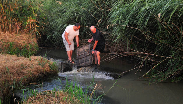 José Moreno Rubio y Juan Legaz Osés echan la puerta del bocal en el río Arlas a su paso por Peralta.