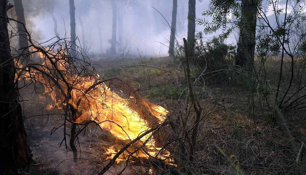 Incendio en Moguer, Huelva
