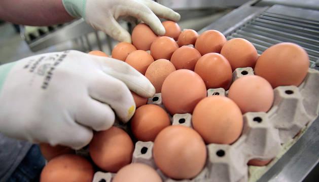 Huevos en una granja de Austria.