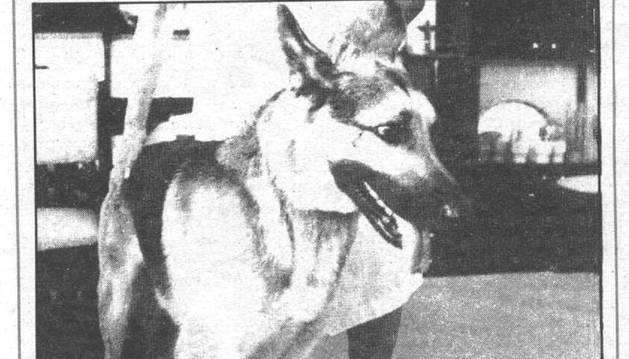 'Bostik', en la portada de Diario de Navarra el 23 de agosto de 1987.