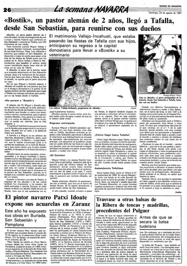 Página de Diario de Navarra con la noticia de Bostik en 1987.