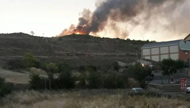 Incendio en un pinar de Arróniz.
