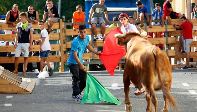 Dos jóvenes citan a la vaca durante la suelta de reses en Noáin.