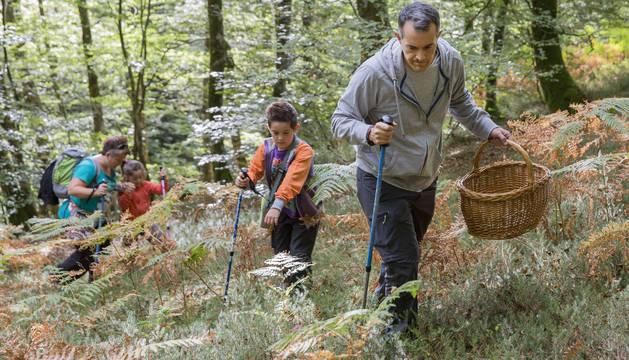 Un grupo de recolectores da rienda suelta a su afición en el Parque Micológico de Ultzama.