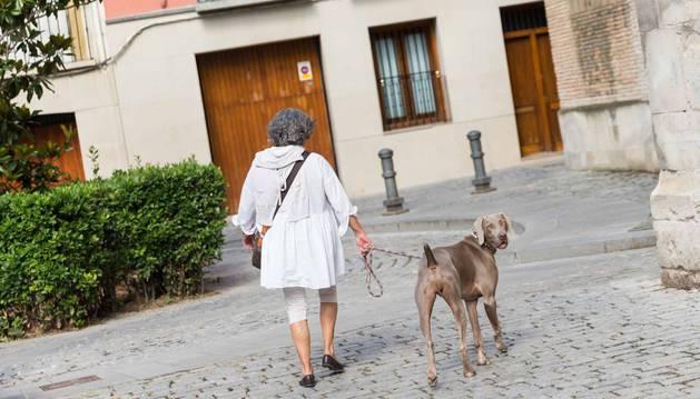Una mujer pasea con su perro por la Plaza Vieja de Tudela.