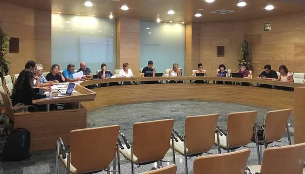 Un momento del pleno celebrado ayer en Ansoáin  y presidido por el concejal de EH Bildu Aritz Ayesa, ante la ausencia de Ander Oroz.
