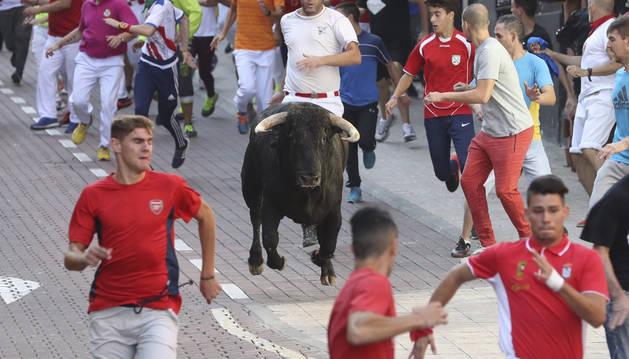 Unos mozos corren delante de un toro durante el último encierro de San Sebastián de los Reyes.
