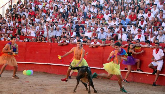 Varios jóvenes disfrazados citan a una vaquilla durante el festival taurino organizado con motivo del día festivo dedicado a las peñas de Milagro.