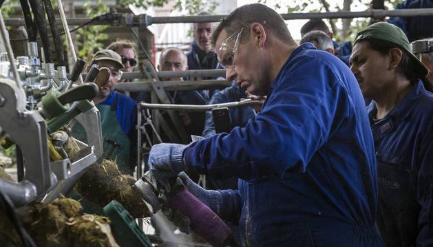 El podólogo bovino Jamie Sullivan lima ayer la pezuña de una vaca, ante la mirada de podólogos españoles, en Etxeberri.
