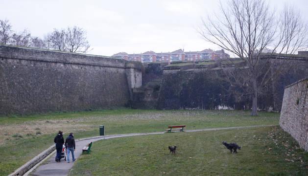 Una de las zonas de esparcimiento canino en la Vuelta del Castillo.
