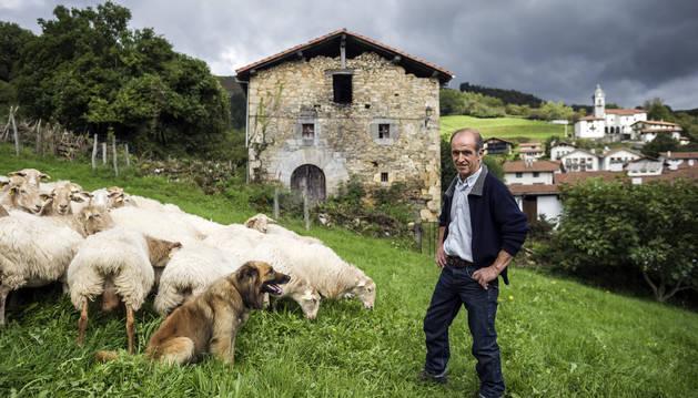 Foto de 'Jai', un perro pastor vasco de 6 años, fija su mirada sobre su amo y guía de sus pasos con el rebaño, Antonio Alustiza Arzadun.