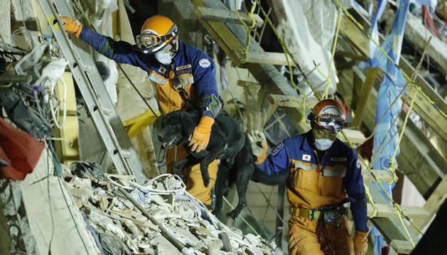 Foto de brigadistas japoneses continúan trabajando en el conjunto multifamiliar de Tlalpan, Ciudad de México.