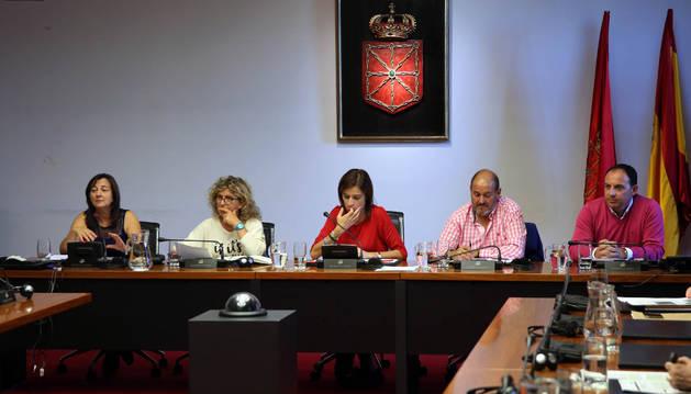 Los representantes de Ayuntamiento y comunidad educativa de Azagra, ayer en el Parlamento.
