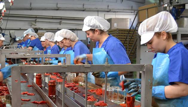 Fábricas elaboradoras y agricultores están a plena producción.