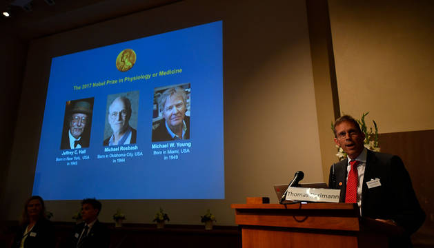 Tres estadounidenses, Nobel de Medicina por sus estudios del