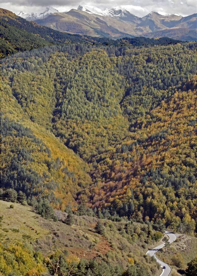 Imagen de los Pirineos de 2009 tomada desde los montes del valle de Salazar.