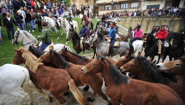 Foto de los caballos serán protagonistas del primer día de feria.