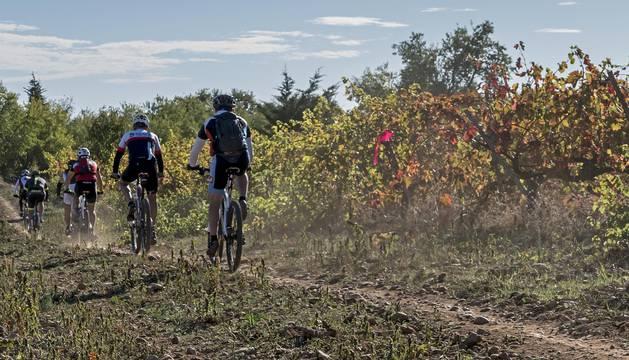 Los participantes en la segunda edición de la Tierra Estella Epic transitan por un camino entre viñedos.
