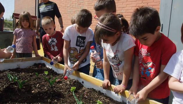 Varios ecolares trabajan en el huerto ecológico del colegio Sanduzelai.