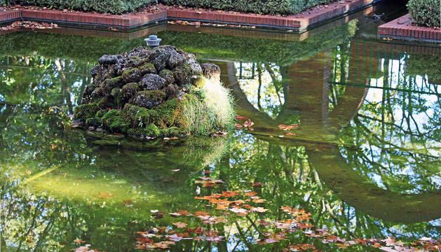Las algas se acumulan y manifiestan el color verde de sus aguas.  Arriba, los residuos son visibles en varios recovecos del estanque.