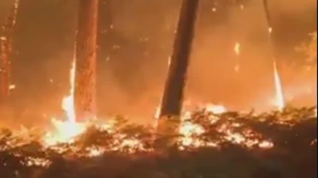 El infierno al que se enfrentan los bomberos en Galicia