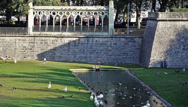 Vista del estanque de la Taconera, donde pueden verse a diario decenas de patos.