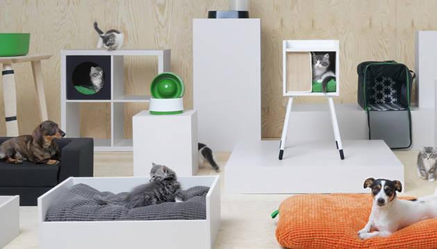 foto de Línea de productos de Ikea para mascotas.