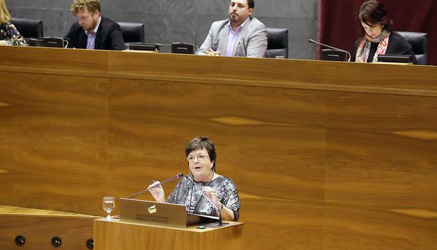 Beaumont, durante su intervención en el Parlamento de Navarra.