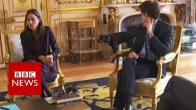 El perro de Macron orina en chimenea del Elíseo ante las cámaras