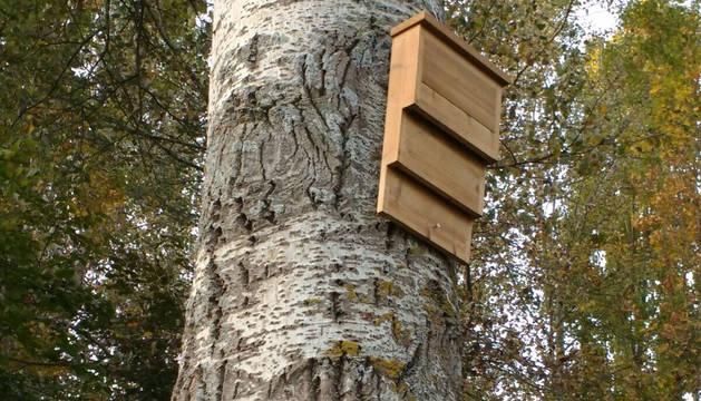 Una imagen de la caja-refugio de madera para murciélagos fabricada en la Fundación Ilundáin Haritz-Berri.