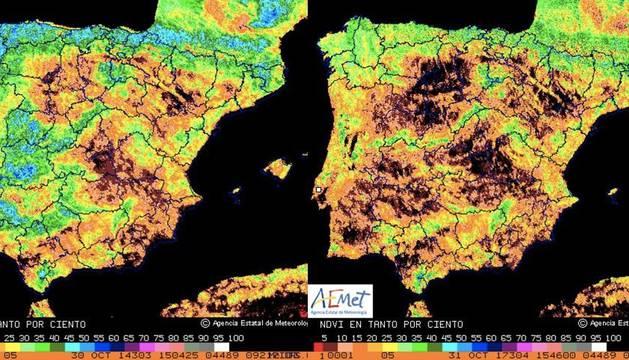 Comparativa del Índice de Vegetación en España (2014-2017)