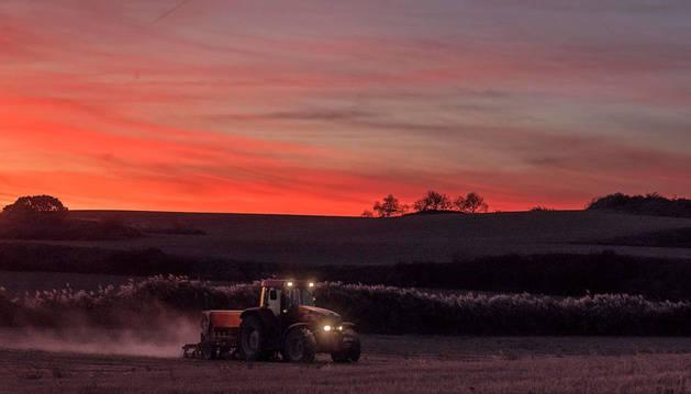 Un agricultor trabaja los campos de Oteiza a la caída de la tarde.