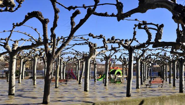 Imagen de un parque de Funes inundado por el Arga