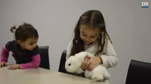 Mi mascota y yo | Nahia y Sayoa nos presentan a su coneja Budy