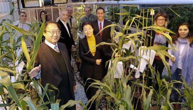Varios de los investigadores, reunidos en el Instituto de Agrobiotecnología de Navarra.