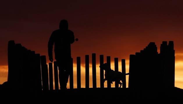 Un hombre pasea con su perro por Pamplona.
